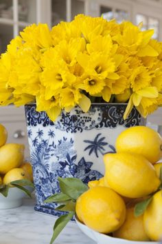 flowers in the home - london home renovation